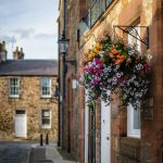 Haddington in Bloom